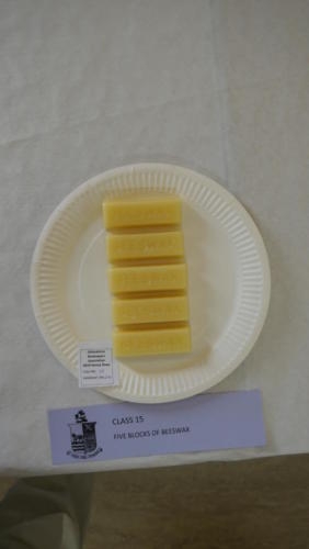 Class 15: Five blocks of beeswax